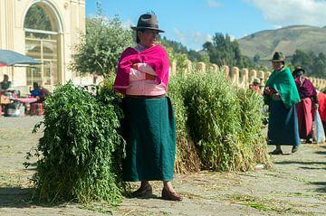 Guamote: Marktkoopvrouw van Maarten Verhees
