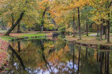 Herfst in Groeneveld