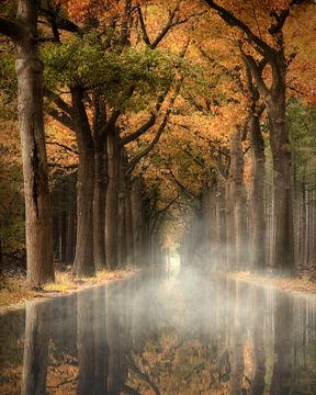 Kanal der Geheimnisse von Kees van Dongen