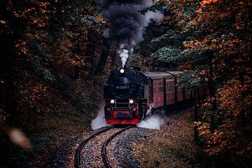 Harzer Schmalspurbahn im Herbst van Oliver Henze