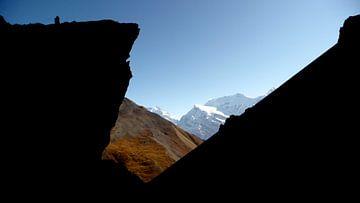 'Plateau 4200 m', Ledar- Nepal von Martine Joanne