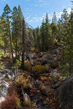 Sierra Nevada gebergte sur Wim Slootweg