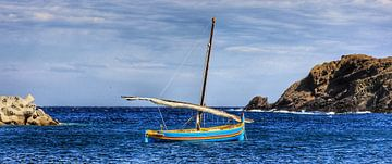 The boat sur