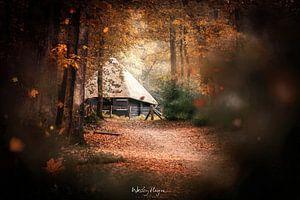 Through the Leaves van