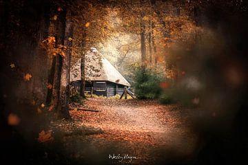 Through the Leaves sur