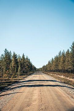 Sandstraße in Schwedisch-Lappland von Expeditie Aardbol