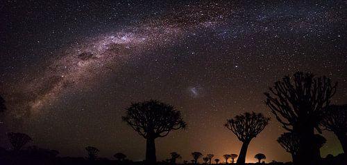 Melkweg panorama van