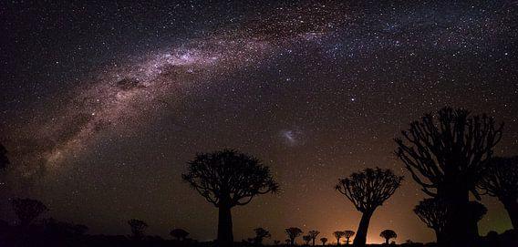 Melkweg panorama van Robert Riewald