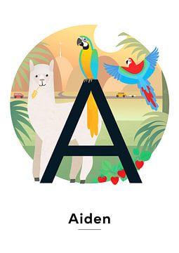 Name Poster AIden von Hannahland .