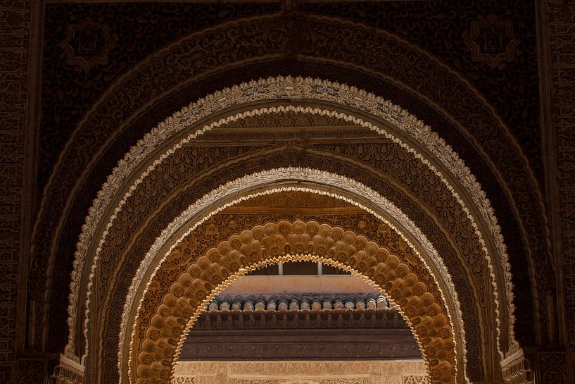 Nasride Palace - La Alhambra de Granada van Natasja Tollenaar