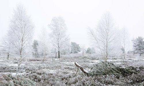 Frosty Heathland van Gisela Scheffbuch