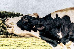 Loeiende stier