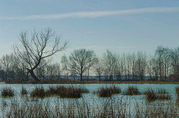 Sonniger Wintertag an der Waterfront von Ans Bastiaanssen