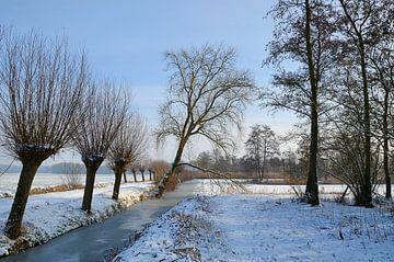 Winter-Slingelandse plassen van Leo Huijzer