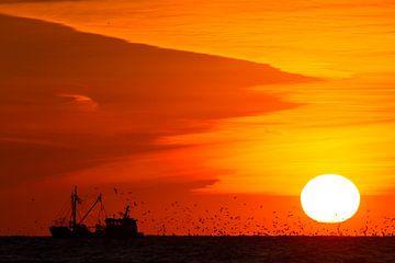 Vissersboot bij ondergaande zon met meeuwen van Menno van Duijn
