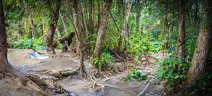 Stroomversnelling in het bos bij Kuang Si, Laos van