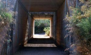 Tunnel onder snelweg.