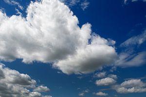 Cumulus of cumulonimbus wolken