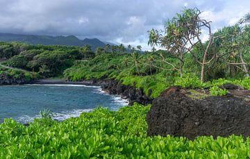 Waiʻānapanapa State Park op Maui van Reis Genie