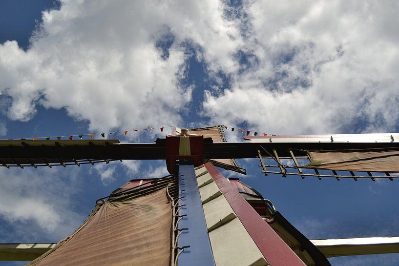 Dochte Partei Mühle Lieshout Nordbrabant sur tiny brok