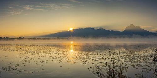 Sonnenaufgang am Hopfensee von