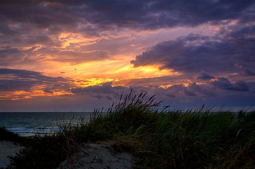 Contrastrijke kleurige zonsondergang aan de Nederlandse kust met de duinen.