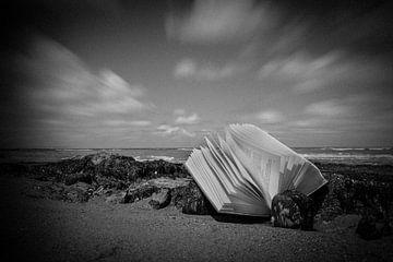 Buch am Meer von nilix fotografie
