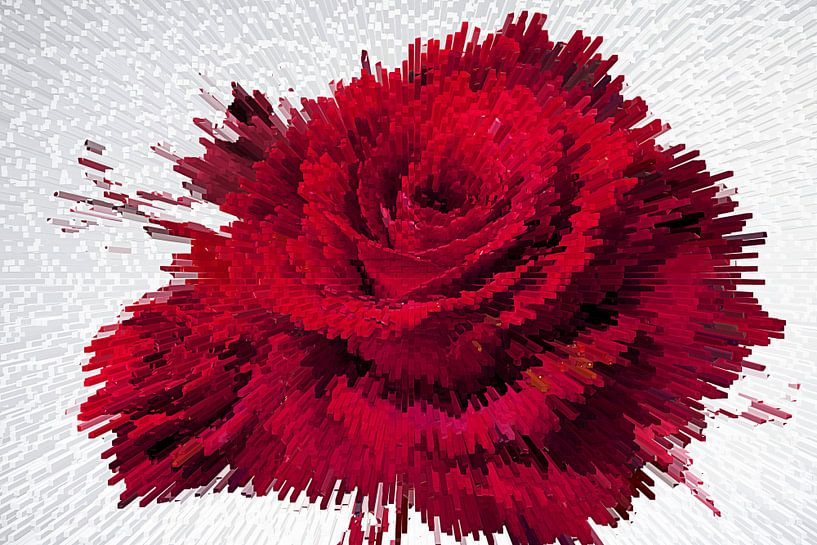 The Rose van Jacky Gerritsen