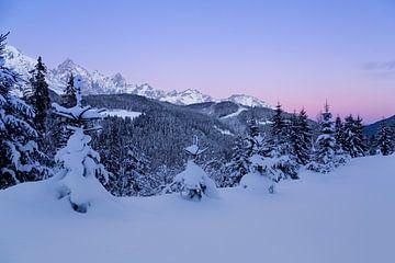 Ondergesneeuwd berglandschap tijdens het blauwe uur van Coen Weesjes