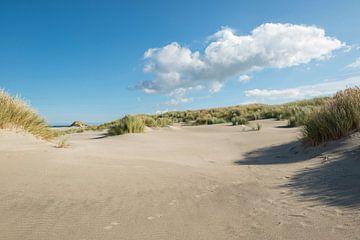 Sporen in het strand sur Tonko Oosterink