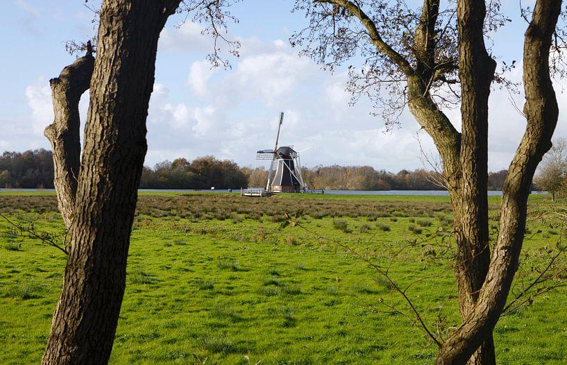 Hollandse molen van Judith van Bilsen