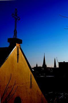 Stadshelden van Utrecht, Stadsheld 11 van Simone Leenders