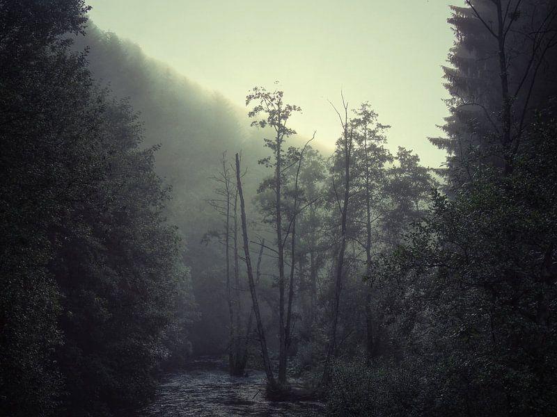 Desolation van Aart Lameris