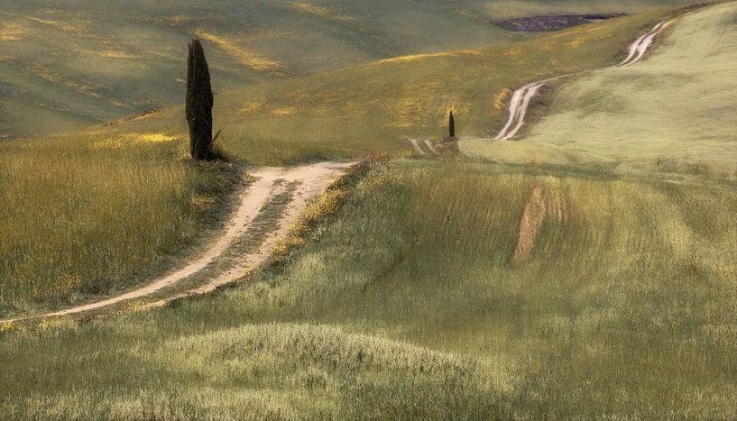 Returning Path van Lars van de Goor