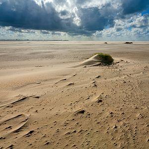 Maanlandschap op het strand