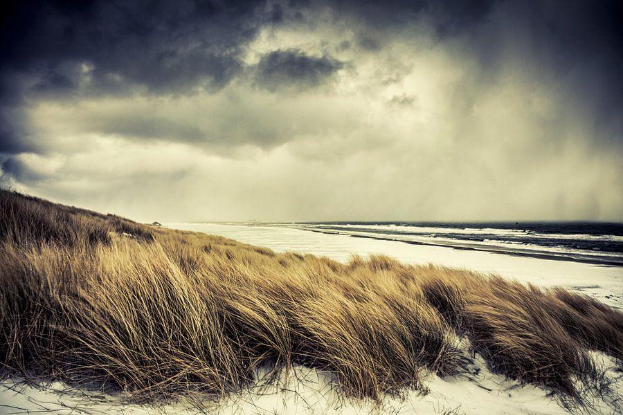 Island Storm van Nanouk el Gamal - Wijchers (Photonook)