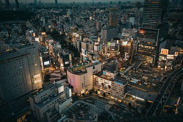 Uitzicht over Tokyo van Sascha Gorter