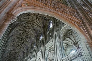 Canterbury van christine b-b müller