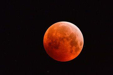 Volle maan, bloedmaan, supermond aan de nachtelijke hemel samen met fonkelende sterren boven Europa, van wunderbare Erde