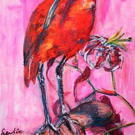 Ibis rouge sur Liesbeth Serlie
