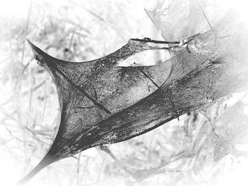 Caterpillar 9 van Jon Houkes