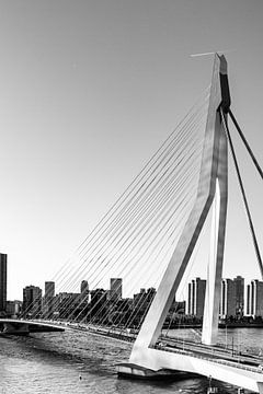 Erasmusbrug in Rotterdam van