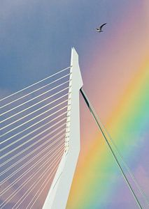 Rainbow over the Erasmus ( lucky shot)  van