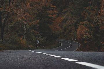 Lege weg een herfstachtig bos in. van Bastiaan Veenstra