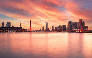 Rotterdam skyline met Willemsbrug