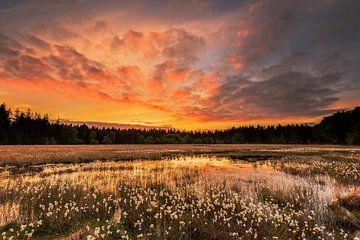 Sonnenuntergang über dem Moorflusen von Karla Leeftink