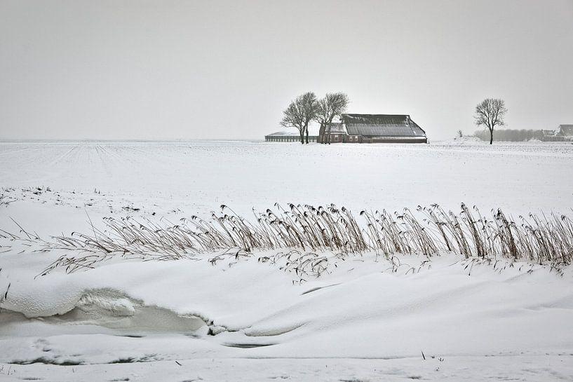 Einsamer Bauernhof im Schnee in Groningen von Frans Lemmens
