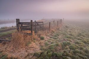 Sfeer in de polder van Arjen Noord