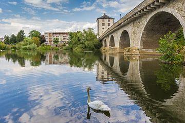 Witte Zwaan bij de oude brug in Limburg an der Lahn van Marc Venema