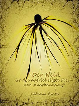 Neid und Eifersucht von Christine Nöhmeier